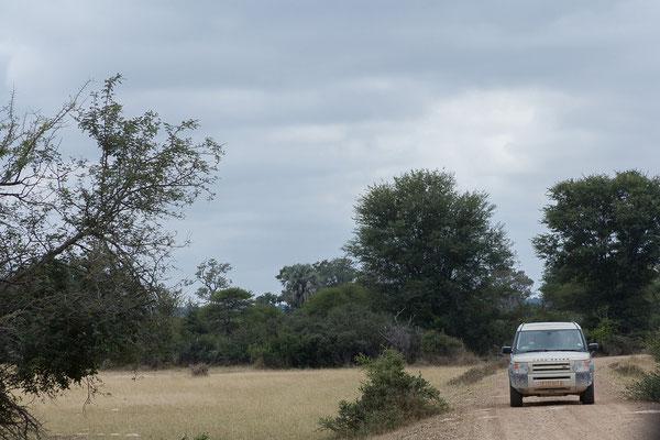25.4. Mahango Game Reserve; Gegenverkehr