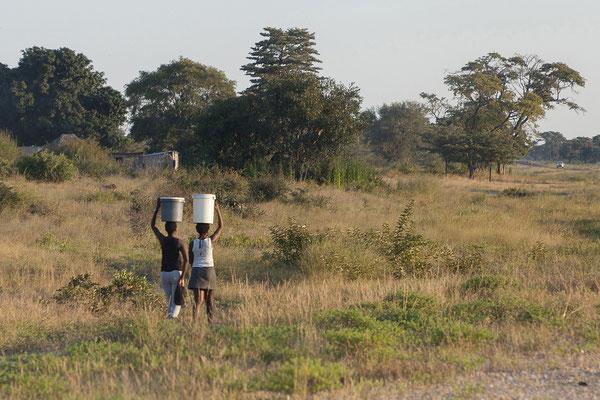 29.4. Unterwegs zurück zum Kamp Kwando.