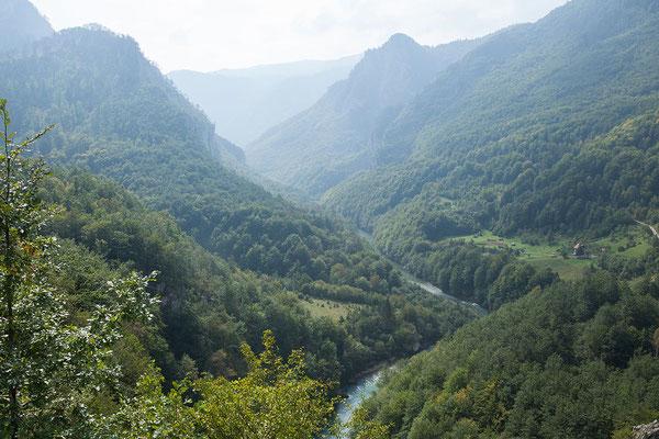 12.9. Blick von der Đurđevića-Tara-Brücke in die Tara-Schlucht.