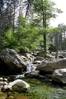 25.5. Restonica Tal: Camping Tuani