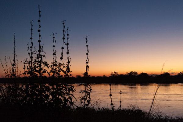 25.4. Nunda River Lodge; wir genießen die schöne Abendstimmung auf unserer Campsite.