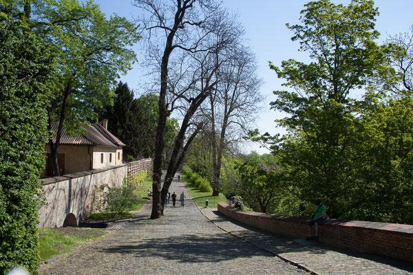 08.05. Prager Burg: Königsgarten
