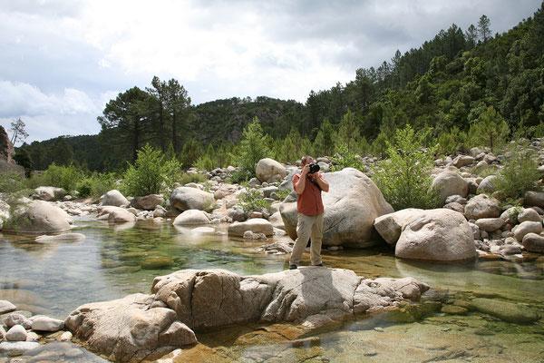 28.5. Camping U Rosumarinu an der Solenzara