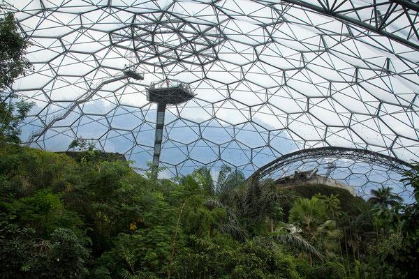 10.09. Eden Project - die aus geodätischen Kuppeln bestehenden Gewächshäuser sind die größten Gewächshäuser Europas.