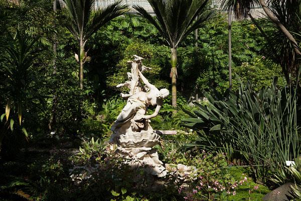 15.09. Parque Eduardo VII: Gewächshäuser Estufa Fría & Estufa Gente