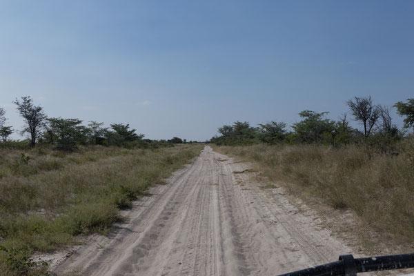 11.05. Vom Gate des Nxai Pan NP sind es etwa 35 km Wellblechpiste bis zum South Camp.