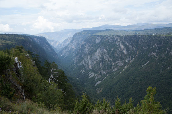 10.9. Der Tara Canyon im Durmitor Nationalpark ist nach dem Grand Canyon die zweittiefste Schlucht der Welt.