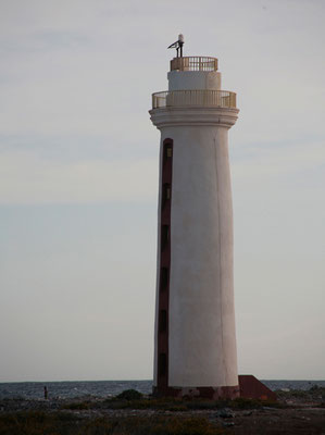 An der Südküste: Willemstoren Lighthouse