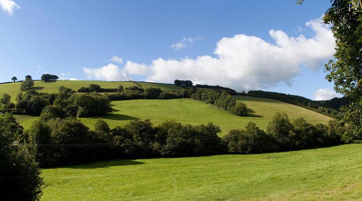 06.09. Exmoor