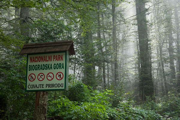 13.9. Wir besuchen den Nationalpark Biogradska Gora.