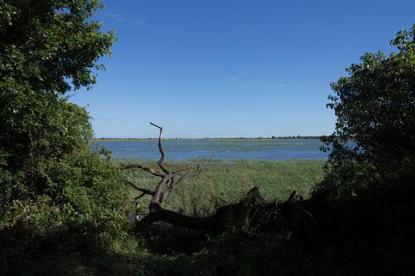 04.05. Heute verlassen wir Muchenje. Unser Ziel ist Linyanti im Chobe NP.
