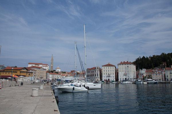 Piran, Hafen