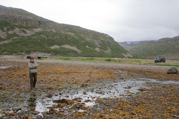 9.8. Westfjorde