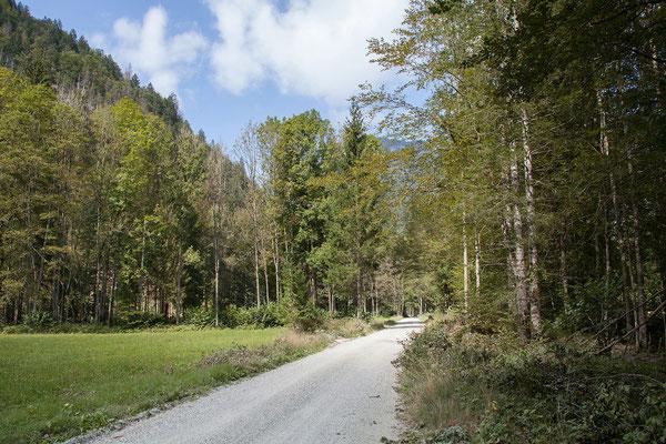 Nebenstrecke über Mojstrana nach Kranjska Gora