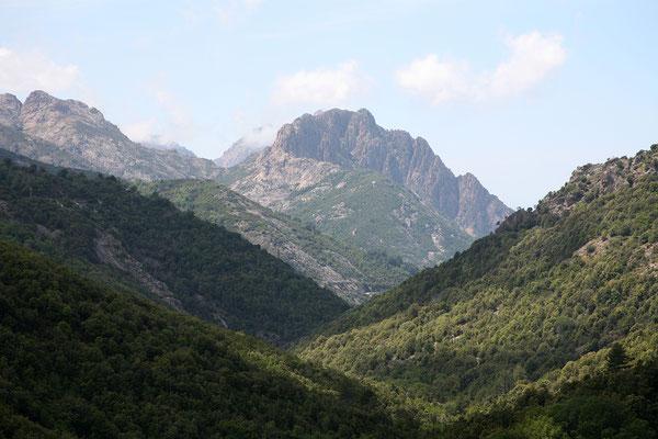 1.6. Bevor wir später in Evisa übernachten, fahren wir weiter Richtung Col de Vergio