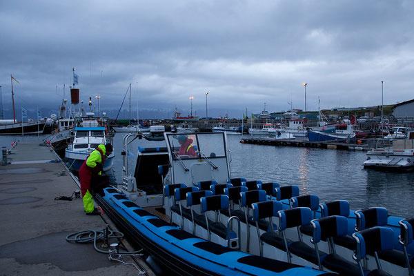 4.8. Húsavík - Whalewatching bei Superwellen