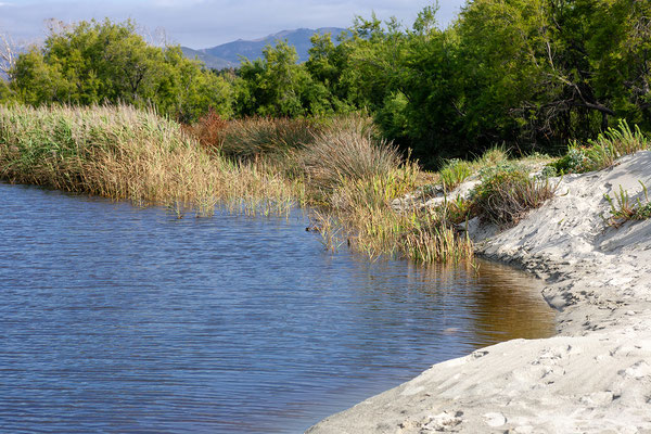 4.6. Unser nächstes Ziel ist der Campingplatz an der Ostriconi Mündung. Die Lage ist großartig und wir erkunden die Gegend ausgiebig.