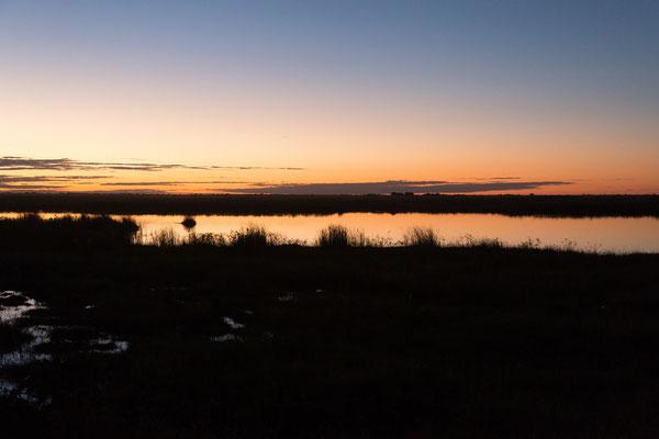 04.05. Chobe NP - Linyanti Campsite; Abendstimmung