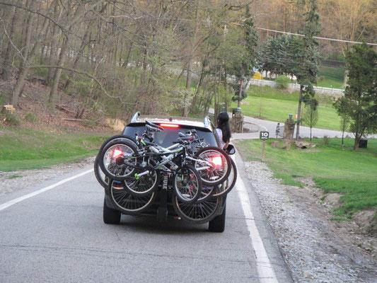 Packleistung: 5 Bikes auf dem Träger und Bella am Rehe beobachten :)