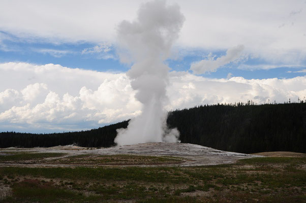 Old Faithful Geysir