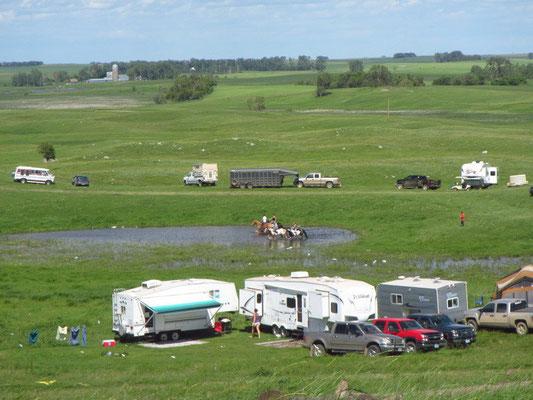 Ab und zu reitet ein Pferd durch den Tümpel :)