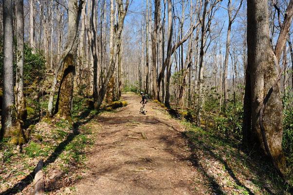 Schöner Hiking Trail