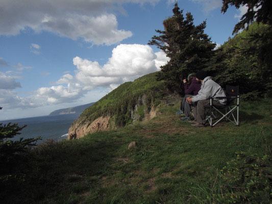 Schlafplatz & Beobachtungsstation bei Pleasant Bay