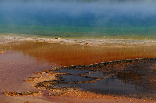 Yellowstone National Park- Prismatic Spring