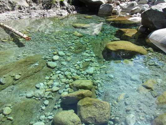 Restonica Fluss