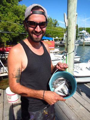 Tarpon Fische füttern...mmmhhh