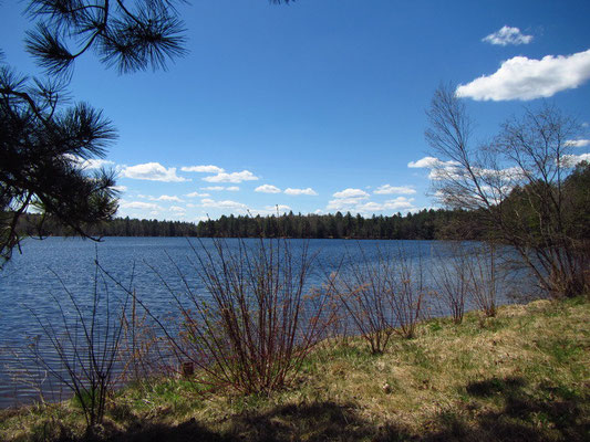 Fish Creek Pond (Adirondack Region)