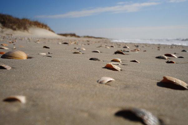 Beach auf der Ocracoke Island