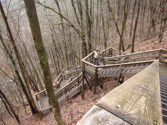Weg runter zu den Amicalola Falls