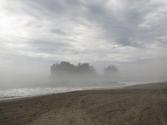LaPush First Beach