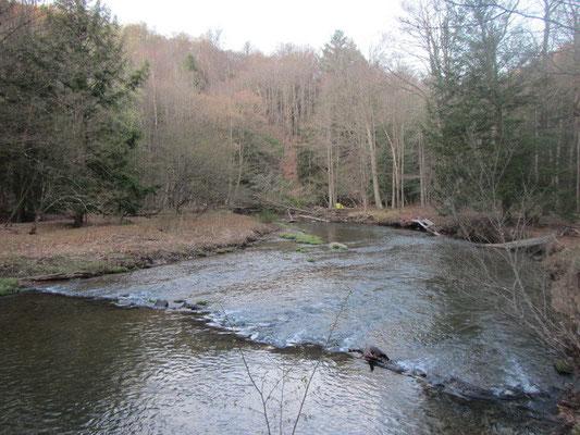 Hübscher Creek direkt vor der Haustüre