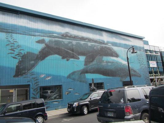 Schöne Wandmalereien an der Bayfront in Newport