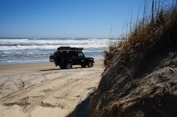 Bagheera fühlt sich sichtlich wohl auf dem Sand