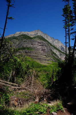 Wanderung im Glacier National Park