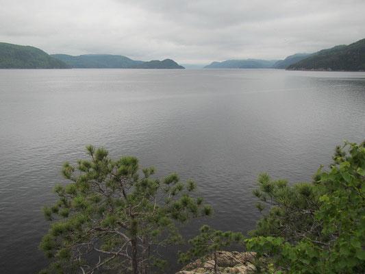 St. Margrites Bay leider ohne Beluga