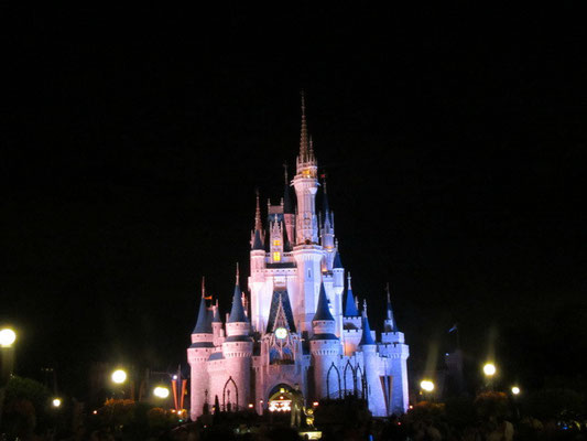 Magic Kingdom by night