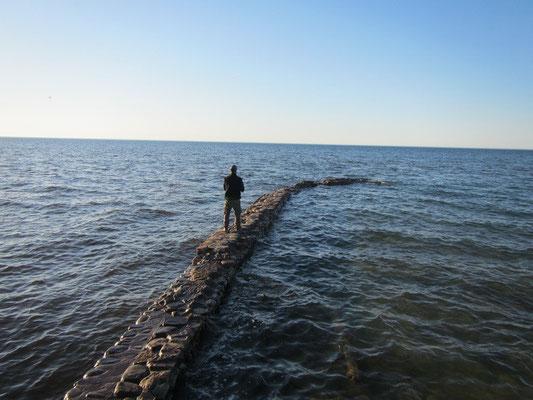 Fischen am Abend im Lake Ontario