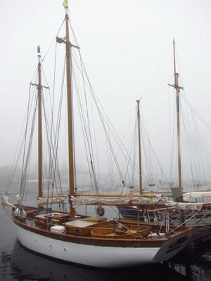 Camden Hafen