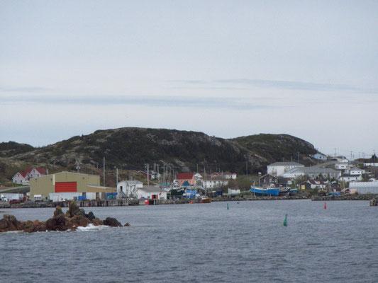Kleines Fischerdorf bei Twillingate