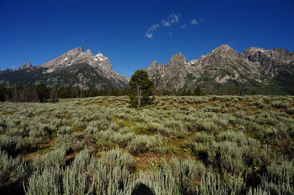 In Grand Teton National Park