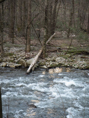 Zurück auf dem Camping direkt am Fluss