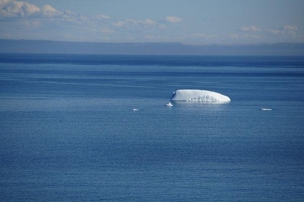 und noch mehr Eisberge....