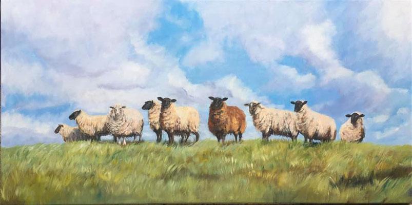 Schafe auf dem Deich 120 x 60