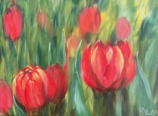 rote Tulpeen 40 x 30 cm