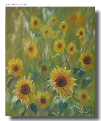 Sonnenblumen °