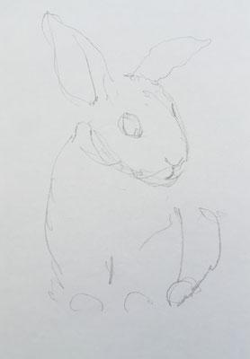 Die Bleistiftvorzeichnung